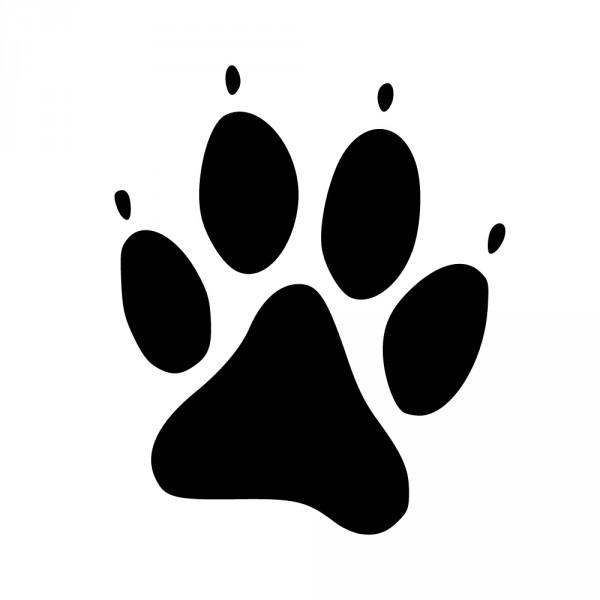 Hundepfoten Bilder Kostenlos